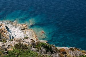 The Blue Ocean #01