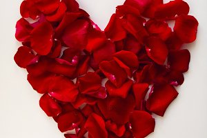 red heart made of rose petals