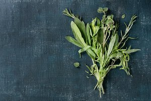 Bundle of fresh Italian herbs