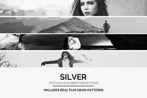 Silver - 28 Real B&W Film Emulations