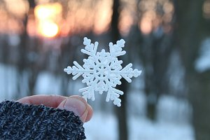 snowfall, January or winter concept, hand holding a snowflake