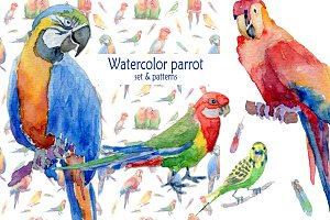 Set of Watercolor Exotic Birds