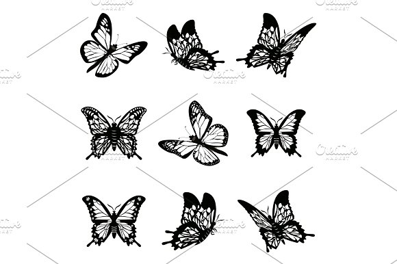 Butterfly Of Silhouette Icon Set Vector Illustration