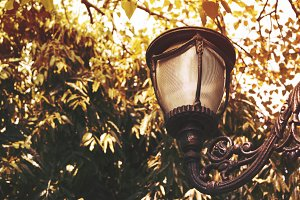 Street Lamp during Sunset