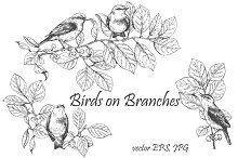 Birds on Branches Sketch