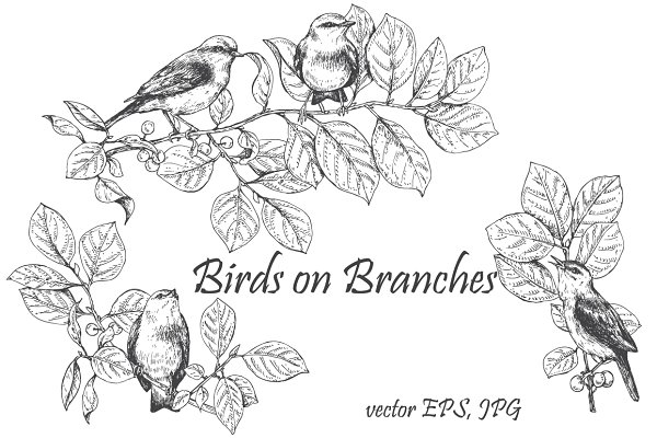 Birds on Branches Sketch