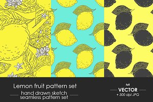 Lemon fruit pattern set