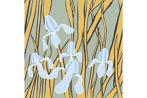 Vector. Graphic stylized image of iris flower. illustration with . Endless stylish texture. Template for design textile, backgrounds, wrappers, package.
