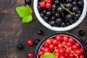 Fresh red and black currants