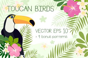 Toucan Birds + Bonus Patterns