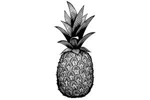 Pineapple, medium detail