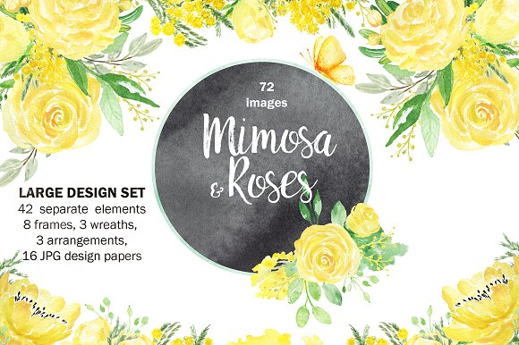 Mimosa Roses Yellow Flowers Set
