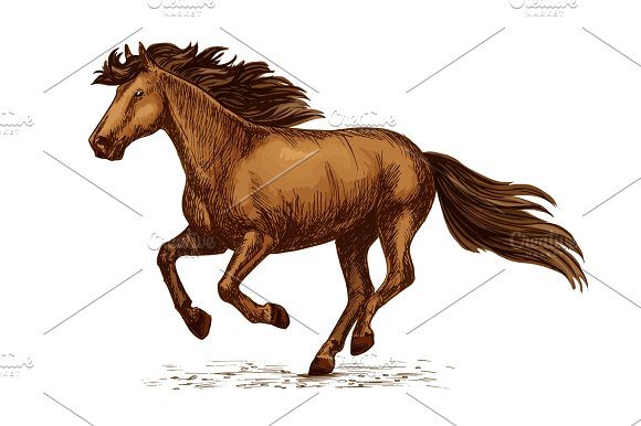 Arabian Brown Horse Running On Races Vector Sketch