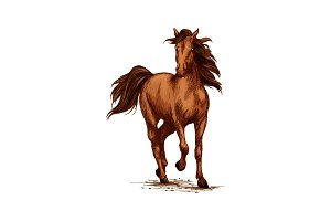 Brown horse running gallop on races vector sketch