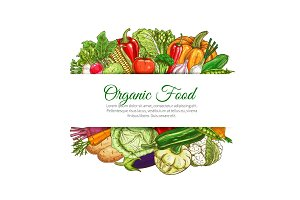 Organic food vegetables harvest vector poster