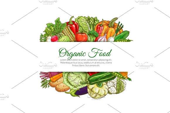 Organic Food Vegetables Harvest Vector Poster