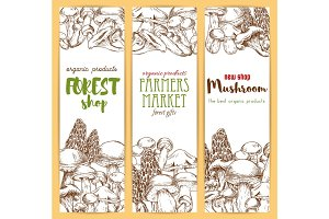Mushrooms vector sketch banners set