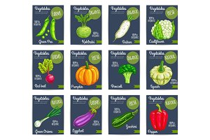 Organic farm vegetables vector price cards