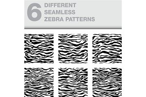 set of 6 zebra seamless textures as a backgrounds