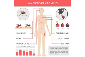 Zika virus infographics with transmission, symptom, prevention and treatment. vector inforgaphic