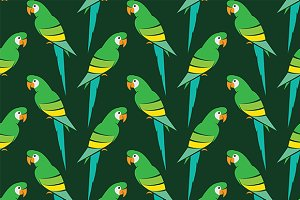Parrot vector art background design.