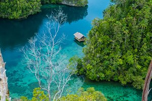 Bamboo Hut in middle of Mangrove near Warikaf Homestay, Kabui Bay and Passage. Gam Island, West Papuan, Raja Ampat, Indonesia