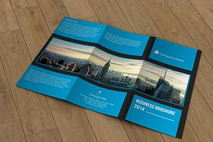 Business brochure - V61