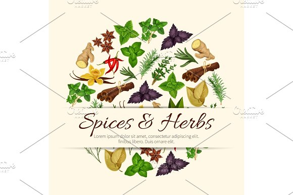 Spices And Herbs Vector Poster