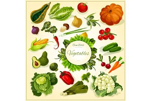 Fresh vegetable poster for food design