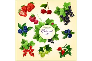 Berry and fruit cartoon poster for food design