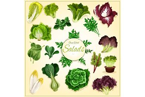 Salad leaf and vegetable greens poster