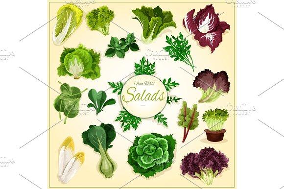 Salad Leaf And Vegetable Greens Poster