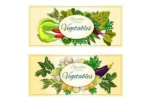 Healthy vegetable banner set with fresh veggies