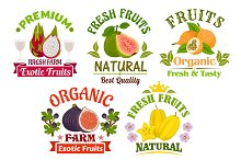 Fresh juicy natural organic fruits icons set