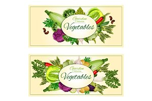 Garden vegetables vector posters, banners