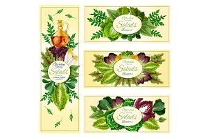 Salad leaf vegetable banner set