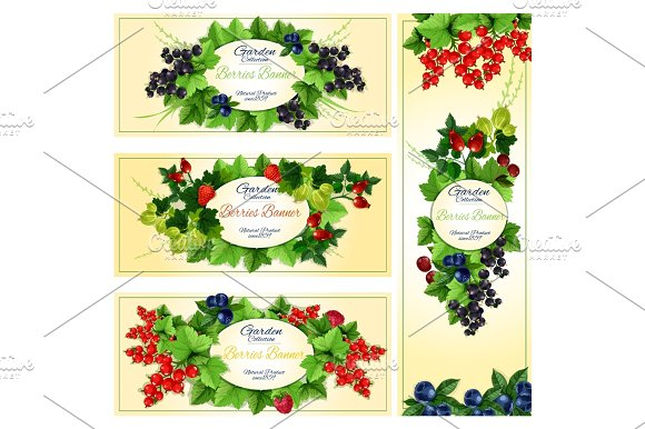 Berry Banner Set With Fruit And Leaf Frames