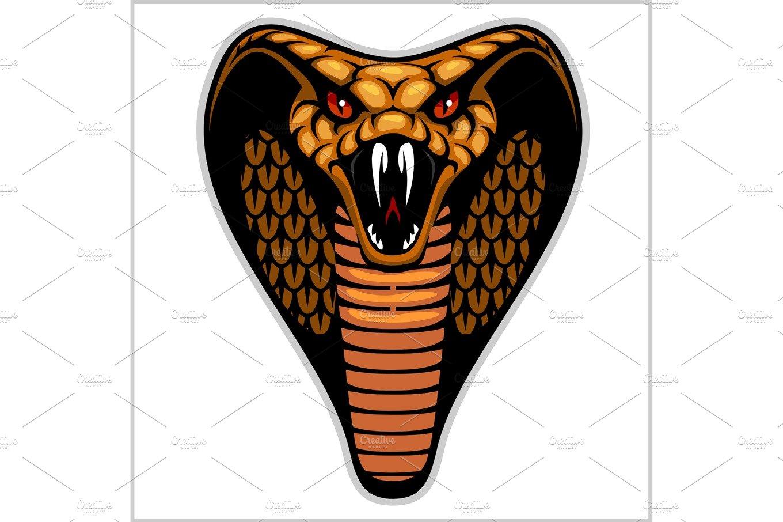 Snake head on white - vector illustration ~ Illustrations ...