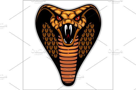 Snake Head On White Vector Illustration