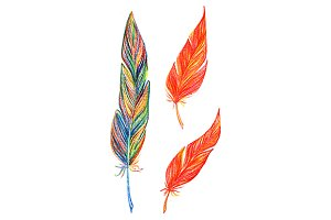 Rainbow colorful feather set
