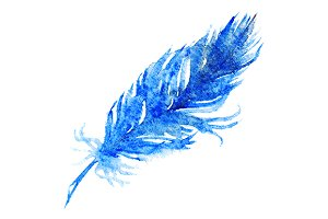 Watercolor single blue bird feather