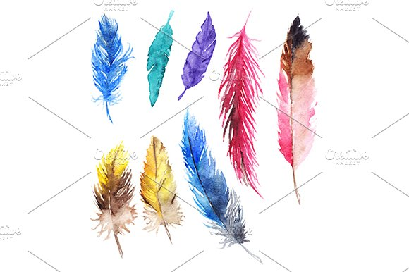 Watercolor Colorful Jay Parrot Feather Isolated Set