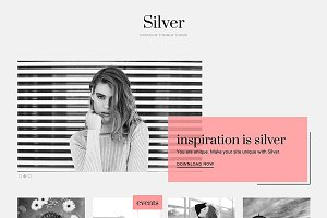Silver WordPress Theme