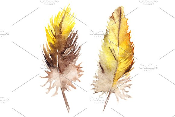 Watercolor Yellow Brown Orange Parrot Bird Feather Set Isolated