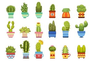 Cactus In Pot Set