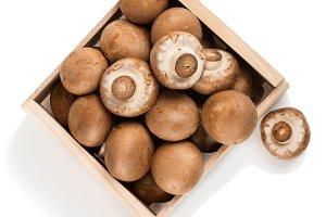 Champignon mushrooms, above vie
