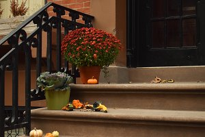 Door Step with Fall Decor