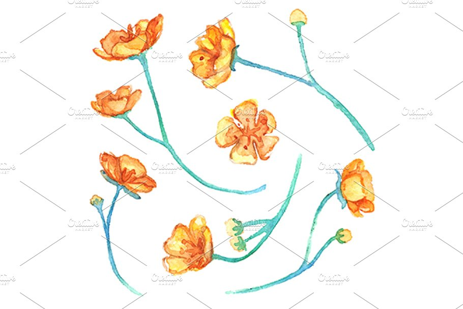 7651472794c2d Save. Watercolor yellow buttercup flowers isolated vector set
