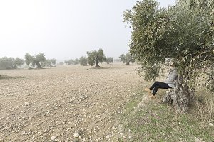 Woman sitting on the one tree