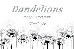 Dandelions: set of illustrations